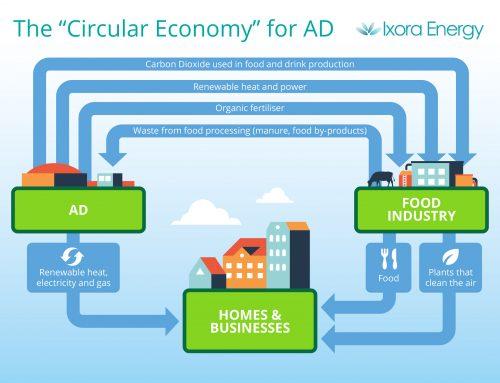 The Circular Economy Explained